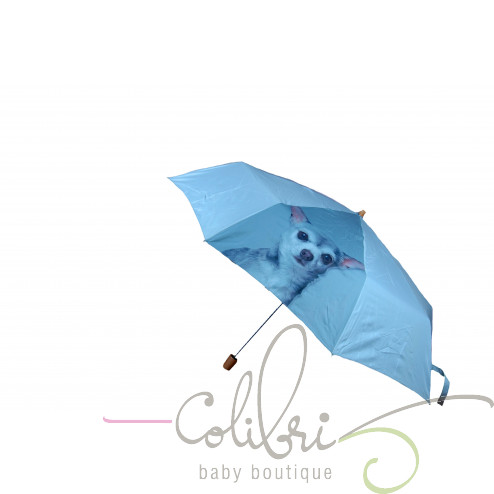 Зонт CHIHUAHUA